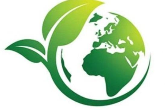 Valores Medio ambientales
