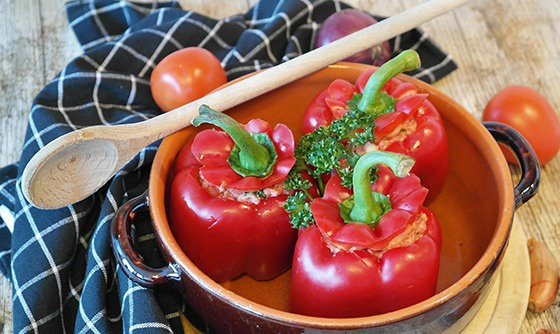 ECOLOGICAL DAY OF PEPPER