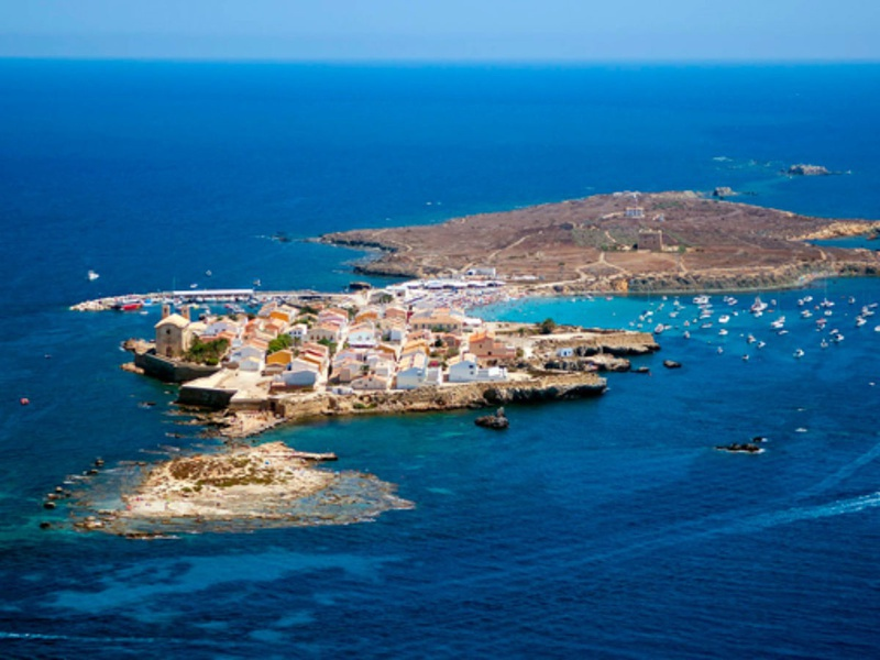 <small>Visit Tabarca Island</small>FREE TABARCA TRIP